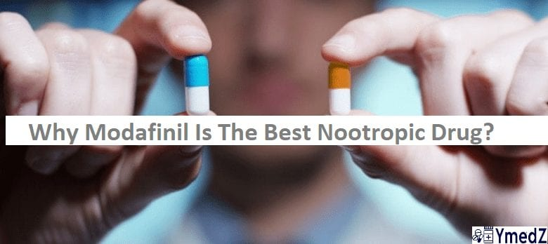 smart pill modafinil